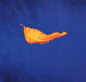 FAC-183 NEW ORDER - TRUE FAITH